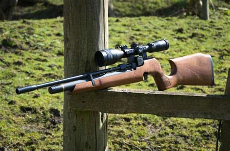 Best Air Rifle World And Best Ar Rifle Scope For Hunting