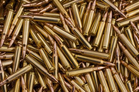 Best Place To Buy 556 Ammo And Best Rifle Ammo For Coyote