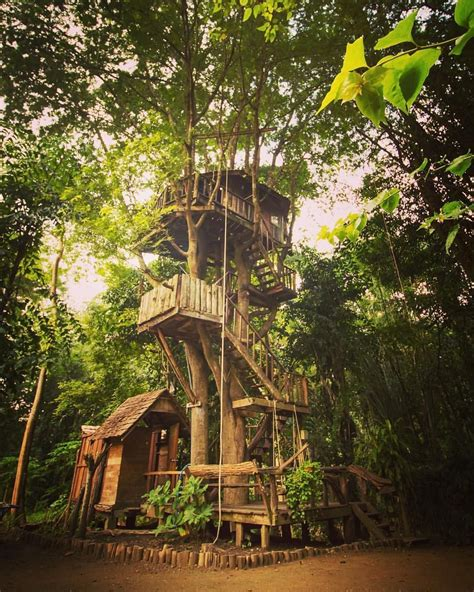 Best-Tree-House-Plans
