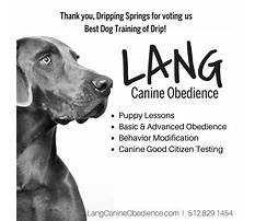 Best Best dog training schools in texas.aspx