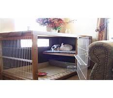 Best Best indoor cages for rabbits