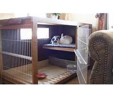 Best Best indoor rabbit hutch