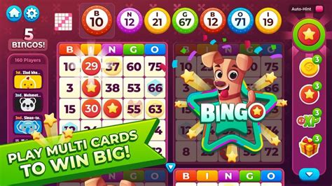 Bingo Games For Real Money