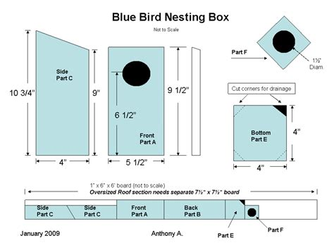 Bird-House-Plans-Dimensions