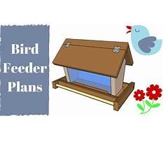 Best Bird feeder building plans