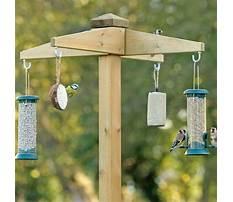 Best Bird feeder holders homemade