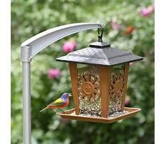 Best Bird house feeder pole