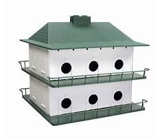 Best Bird house for sale near me