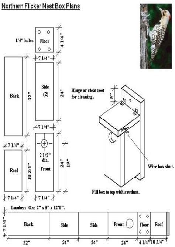 Birdhouse-Plans-Finch