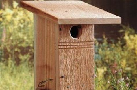 Birds-And-Blooms-Birdhouse-Plans