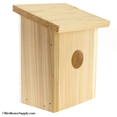 Blue Jay Birdhouse Plans