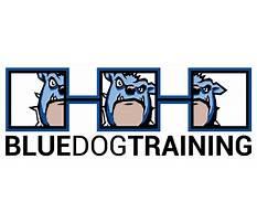 Best Blue dog training cpr