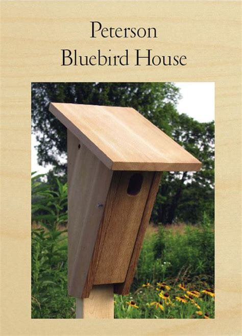 Bluebird Bird House Plans Woodworkers Magazine