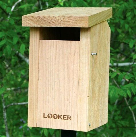 Bluebird House Plans Wisconsin