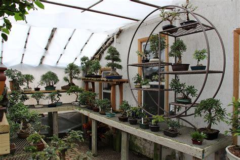 Bonsai-Greenhouse-Plans