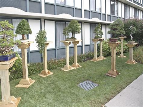 Bonsai-Stand-Diy