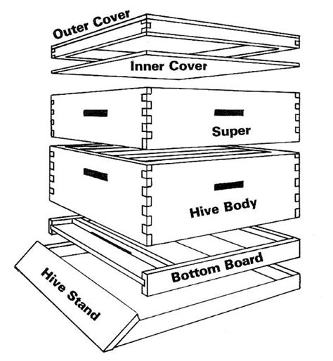 Box Joint Bee Hive Plans Pdf