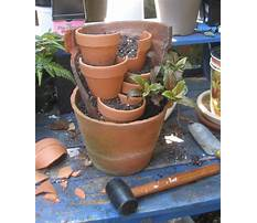 Best Broken pot planters