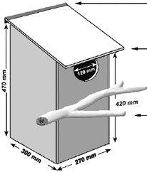 Brushtail-Possum-Box-Plans