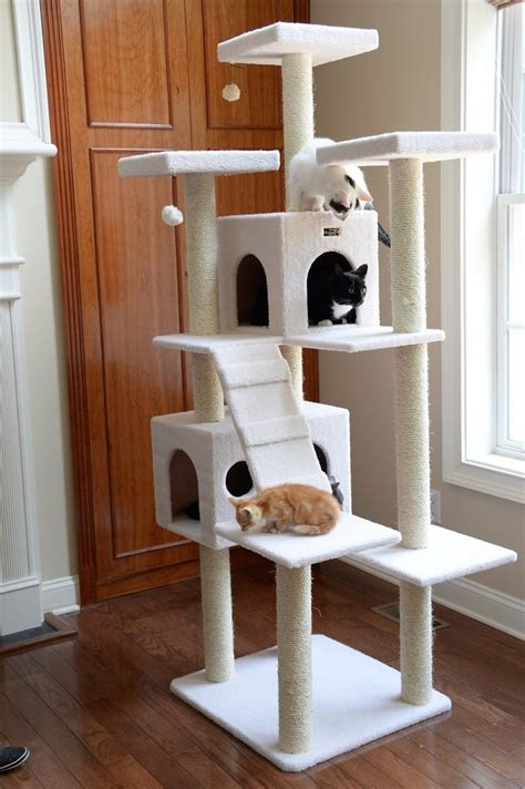 Build A Cat Tree Free Plans Shed
