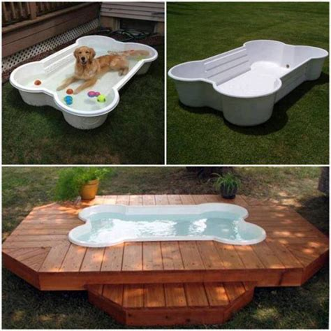 Build A Dog Pool Into Deck Paint