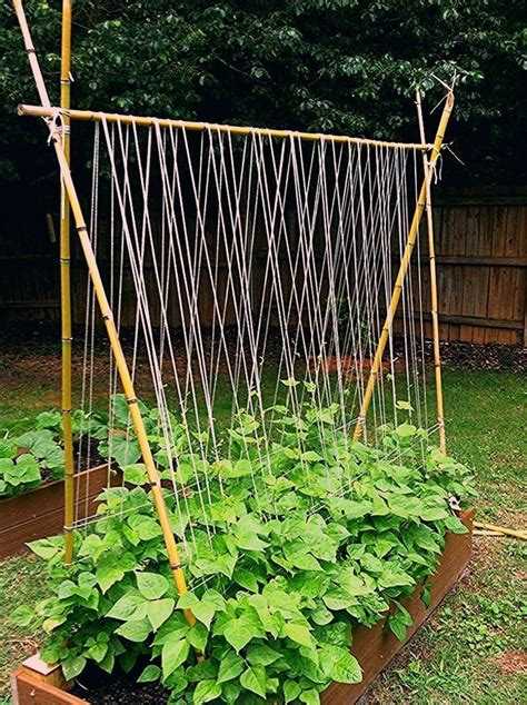 Build A Homemade Garden Trellis