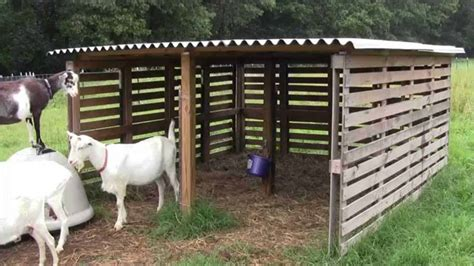 Build-Sheep-Barn-Plans