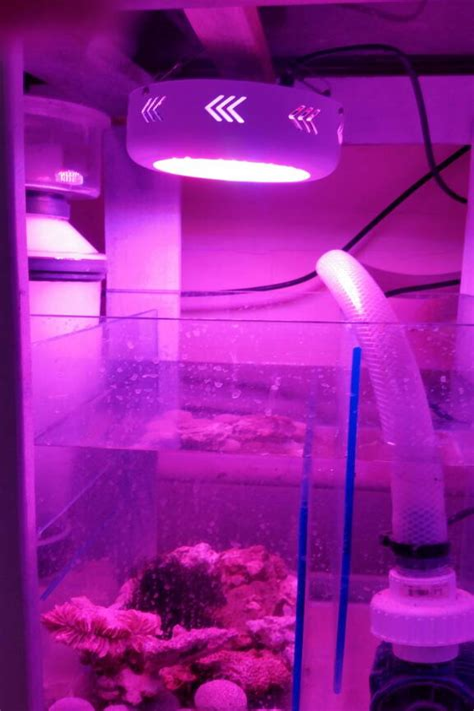 Build-Tiny-House-Plans-Reality-Lfs