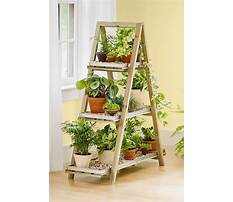 Best Build an outdoor plant stand