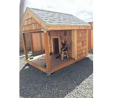 Best Build dog house.aspx