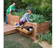 Best Build raised garden beds with sleepers