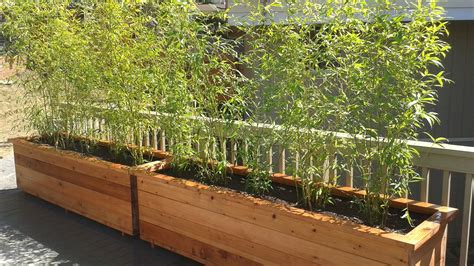 Building A Bamboo Planter Box