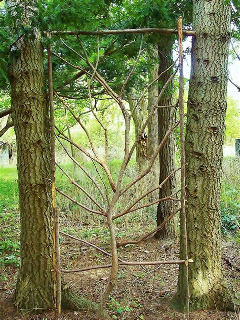 Building An Arbor With Tree Branches