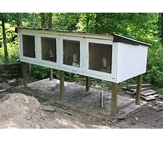 Best Building a bunny hutch plans