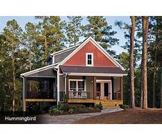 Best Building a small cabin in the woods.aspx
