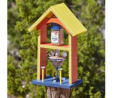 Best Building bird feeder