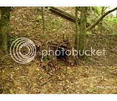 Best Building bobcat cubbies