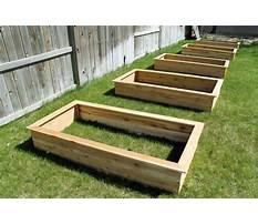 Best Building raised garden boxes.aspx