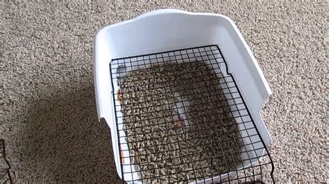 Bunny Litter Box With Grate