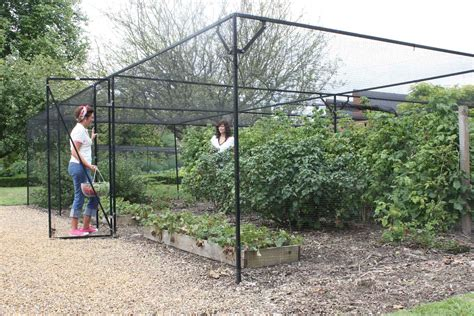 Bush Bird Net Cover Frame Diy