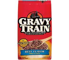 Best Can a dog eat dry gravy train