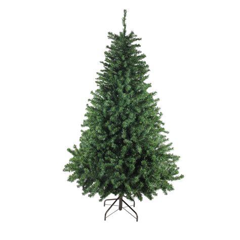Canadian-Pine-Christmas-Tree