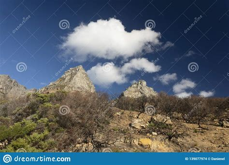Cape-Drying-Table-Plans