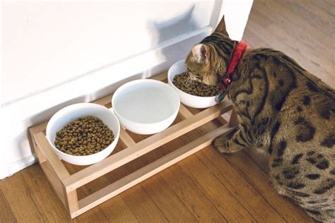 Cat Bowl Stand DIY