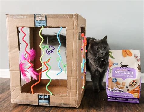 Cat Play Box Diy Crafts
