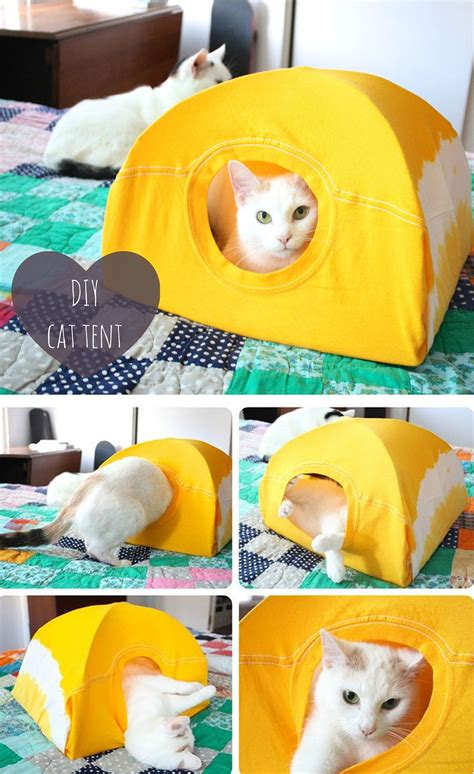 Cat Tent Bed Diy Ideas