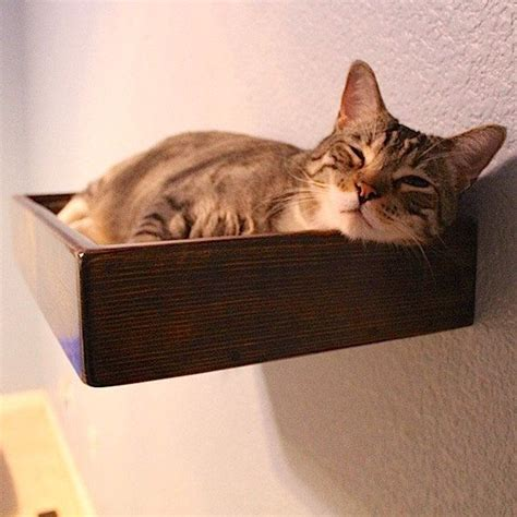 Cat Wall Bed Diy Kit