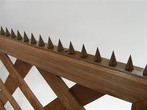 Cat-Spikes-In-Wood-Fence-Diy