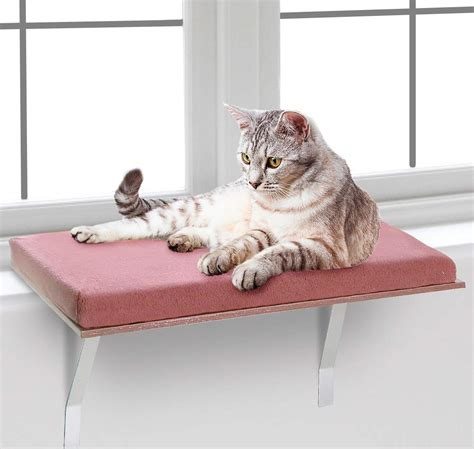 Cat-Windowsill-Shelf-Diy