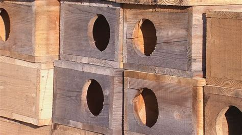Catfish-Spawning-Box-Plans